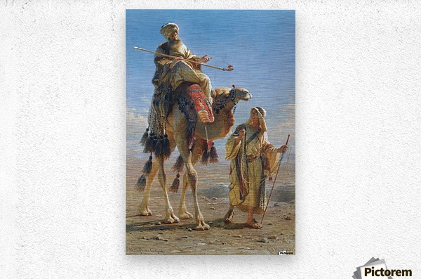 Riding the camel  Metal print