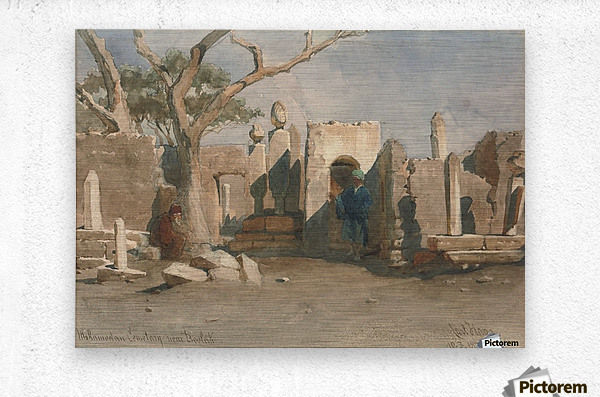 The Mohamedan Cemetery near Boolak 1874  Metal print