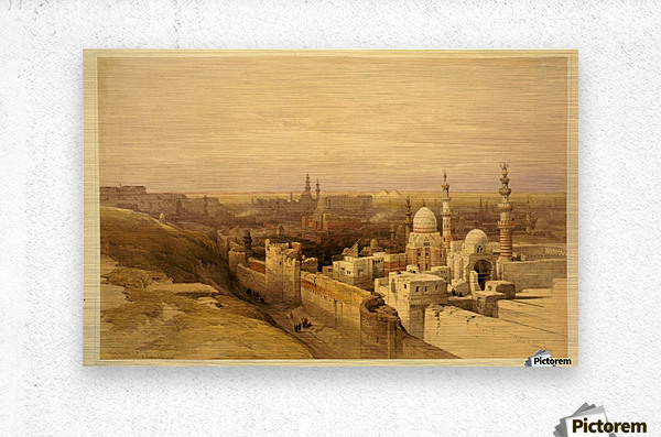 View of Old Cairo  Metal print