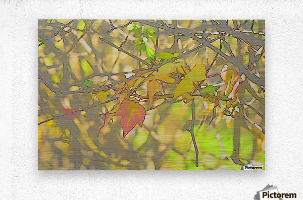 Leaves Macro 5 Abstract 2  Metal print