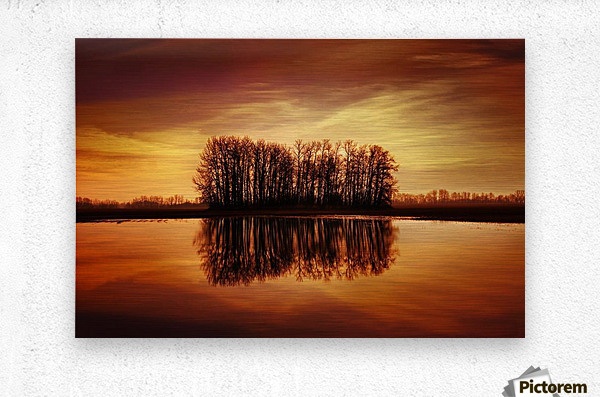 Silhouetted Trees Reflected On Water  Metal print