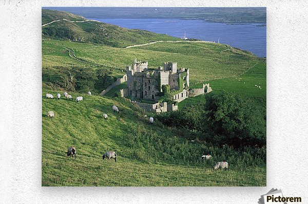 Clifden Castle, Co Galway, Ireland; 19Th Century Gothic Revival Style Castle  Metal print