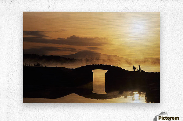 Killarney Golf Course, Co Kerry, Ireland; Silhouetted Golfers  Metal print