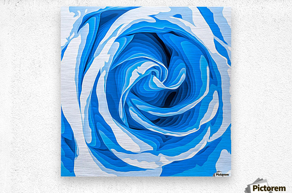 closeup blue rose texture abstract background  Metal print