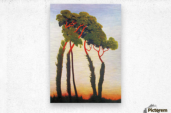 Five Trees by Felix Vallotton  Metal print
