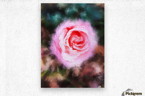 pink rose with green and brown background  Metal print