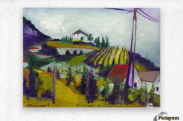 Vineyards on foothill  Metal print