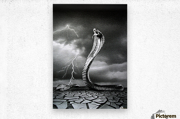 THE STORM IS COMING...  Metal print