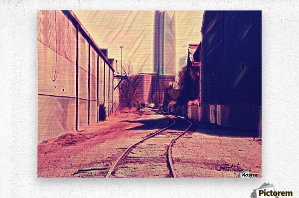 railstojails  Metal print