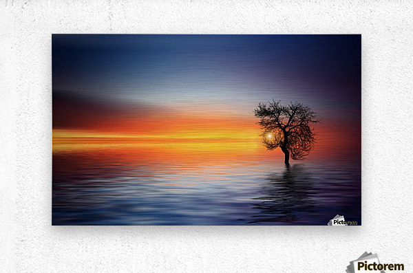 Tree at lake  Metal print