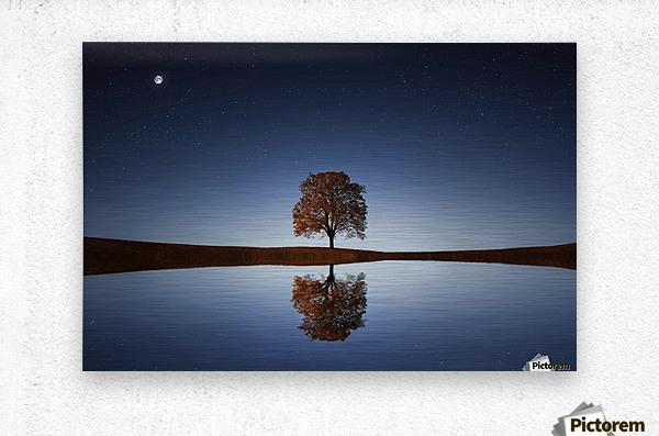 Reflection tre  Metal print