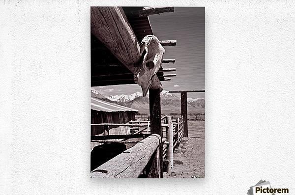 ©lou Freeman Wild West Cowboy Art 1020 21  Metal print