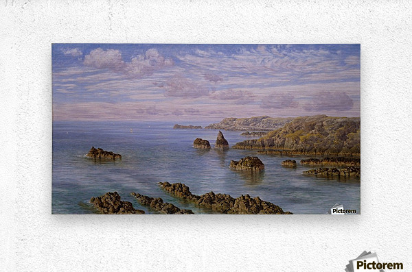 Southern Coast of Guernsey, 1875  Metal print