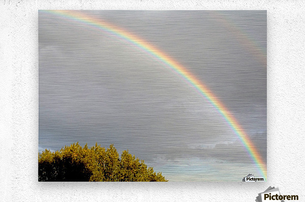 Landscape, photography - Double rainbow on Roman sky with tree - The Roman landscape, Rome, Italy, photography  Metal print