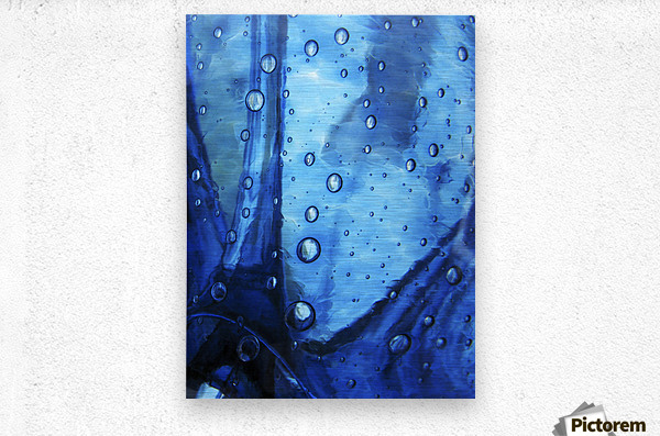 Trickster, Massachusetts, Seekonk, Caratunk Wildlife Refuge, Extreme Close-Up Of Water Droplets On Blue Surface.  Metal print