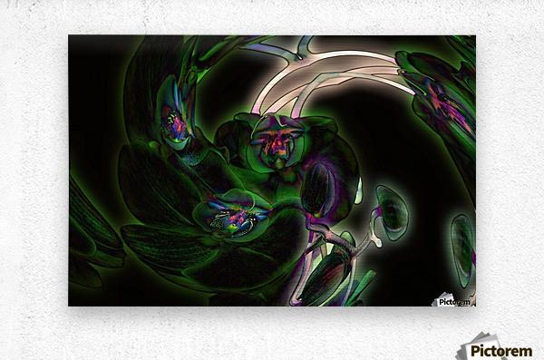 Orchid in Glow  Metal print