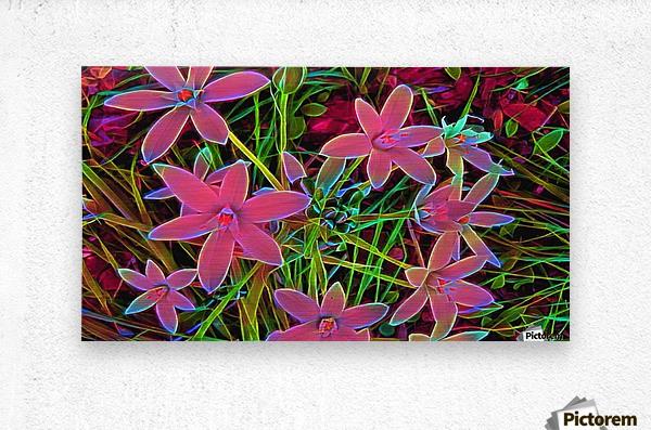radiantplant  Metal print