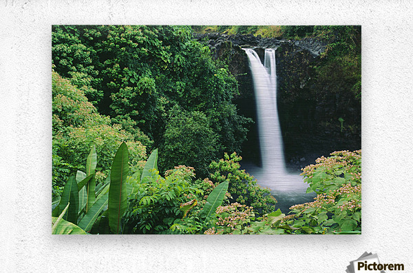 Hawaii, Big Island, Hilo, Wailuku River State Park, Rainbow Falls, Flowers And Greenery In Foreground.  Metal print
