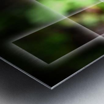 Fragile et résistante Metal print