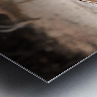 Kudu jump Metal print