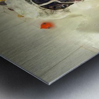 The Bath Metal print
