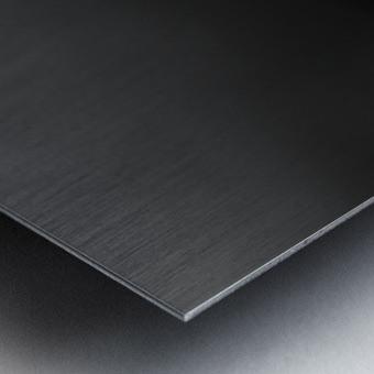 mit Schwung Metal print