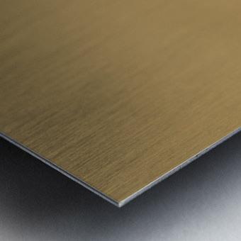 Woodchat Shrike Metal print