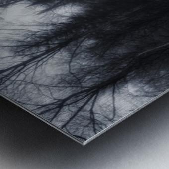 Slalom Metal print