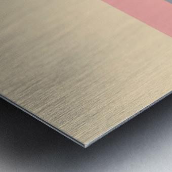 IMG_0098 Metal print