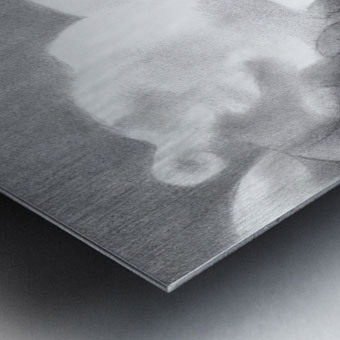 The return of the dutch elephants (@ Gouda) - 12-07-17  Metal print