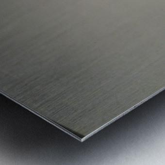 15002111230691551352001 Metal print