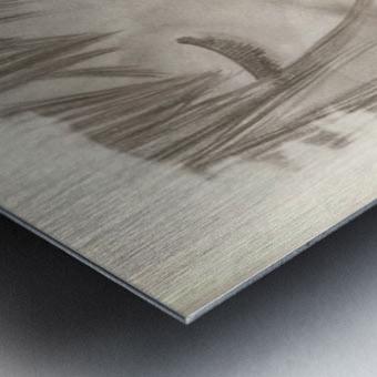 307503_158633934220099_959547919_n Metal print