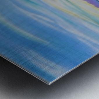 Nanoose Bay  Metal print