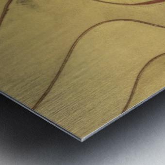 Lonoke, AR | Rice Levees  Metal print