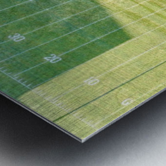 Lonoke, AR | Jackrabbits Football Field Metal print