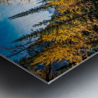 Taylor Lake, Alberta Metal print