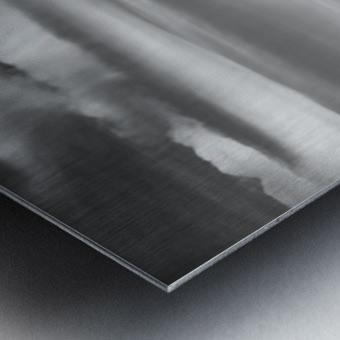 LionsHeadBW Metal print