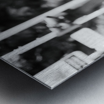 29940006 Metal print