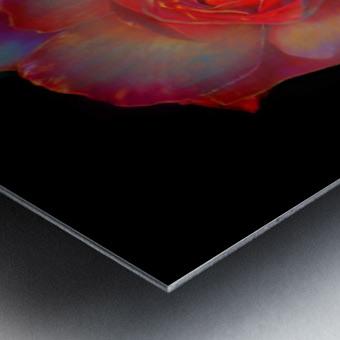 Gilded Rose Metal print