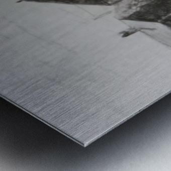Romney Marsh  Metal print