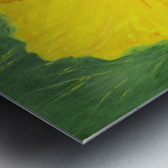 Yellow Hisbiscus Flower. Metal print