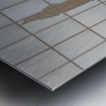 Reflection of Church Building Metal print