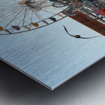 Sea Gulls & Santa Monica Pier Metal print
