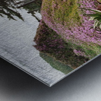Nature Creates Metal print