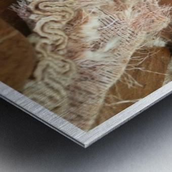 Chair & Caterpiller Metal print