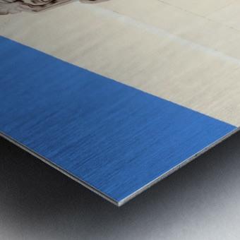 Blue Angel On Watch Metal print