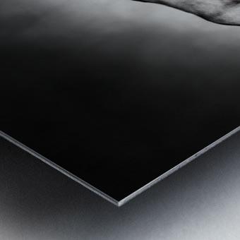 Gemsbok fight Metal print