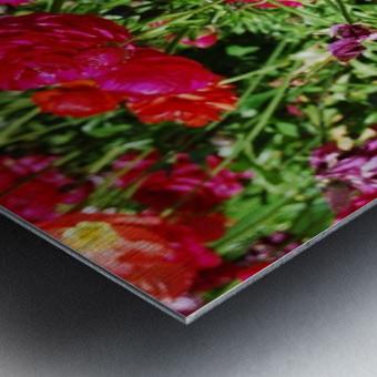 Flowers Growing in a garden Metal print