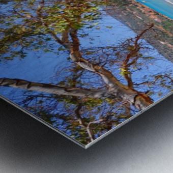 DSC_0591.JPG Metal print