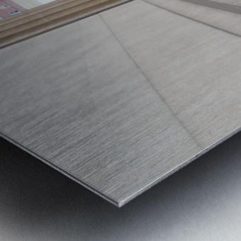 Inside the walls Metal print
